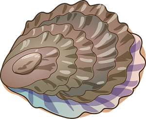 Oyster immagine clipart