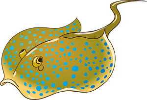 Stingray clipart