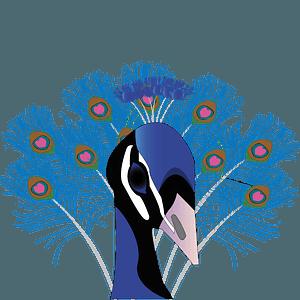 Peacock head 클립 아트