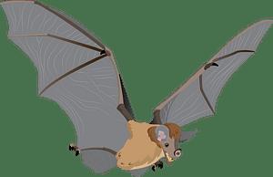 Spectral bat clipart