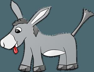 Funny donkey clipart