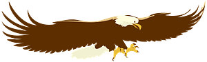 Eagle in flight clipart
