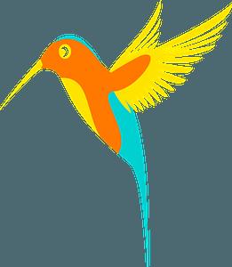 Colorful hummingbird clipart