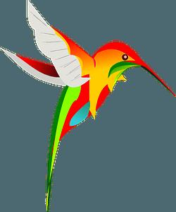 Colourful hummingbird clipart
