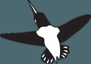 Hummingbird in flight clipart