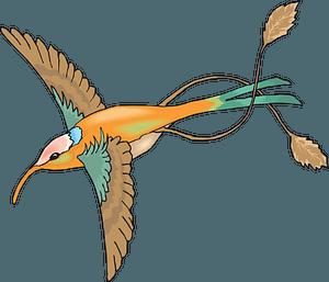 Fairy hummingbird clipart