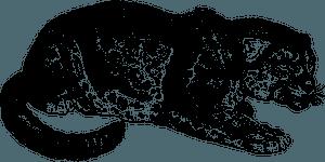 Jaguar - black and white 클립 아트