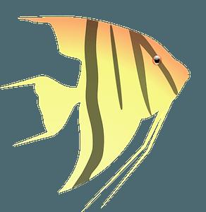 Клипарт Angel fish
