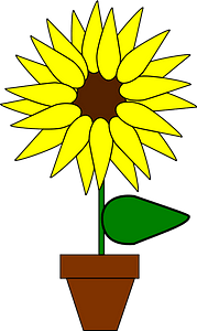 Flower in a pot clipart