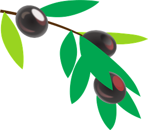 Black Olives on a Branch clipart