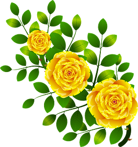 Yellow rose clipart