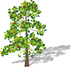 Tree with fruits clipart