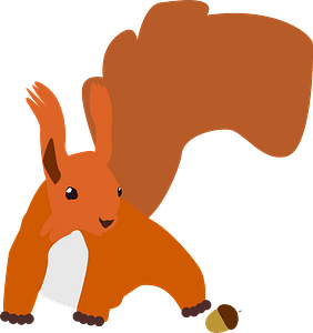 Squirrel with acorn clipart