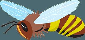 Bee clipart