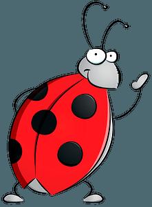 Friendly ladybug clipart