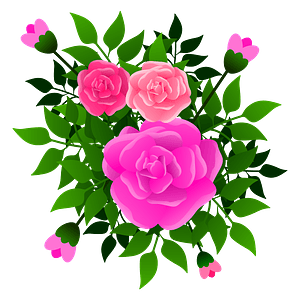 Pink Roses Bouquet clipart