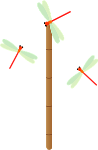 Red Dragonfly Insects clipart