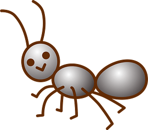 Ant Insect clipart