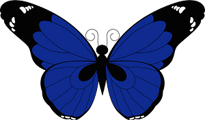 Butterfly Insect clipart