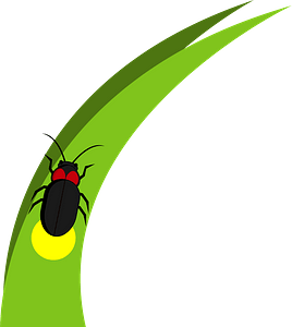 Firefly on Grass Blade clipart