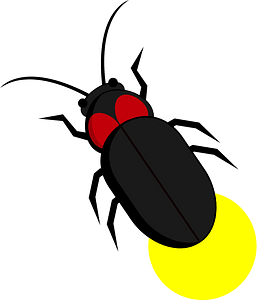Firefly Insect clipart