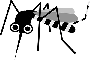 Mosquito Insect clipart