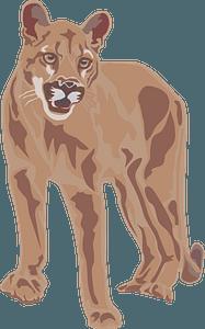 Cougar 클립 아트