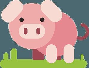Cartoon pig on the grass clipart