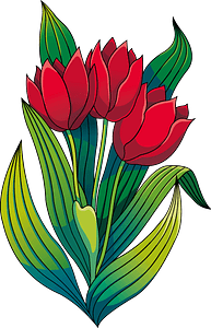Tulips clipart