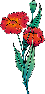 Wildflower poppy clipart