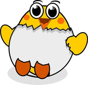 Cartoon chick hatching clipart