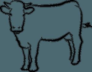 Drawn cow clipart