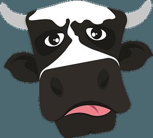 Cow face clipart