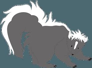 Gray Striped Skunk clipart