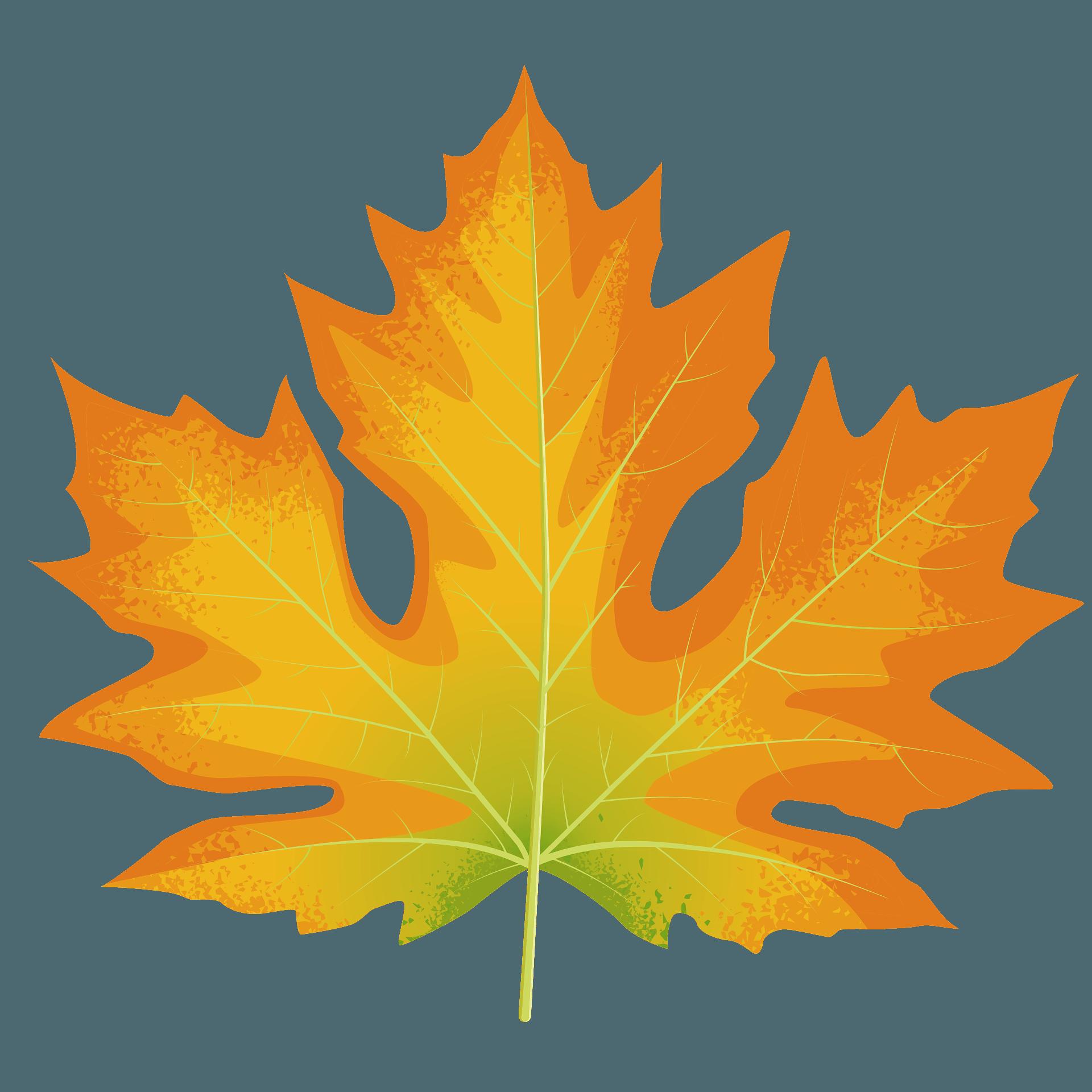 0-4411_autumn-clipart-autumn-maple-tree-fall-tree-clip-art - Snyder Public  LibrarySnyder Public Library