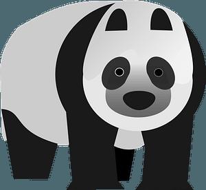 Panda Illustration clipart