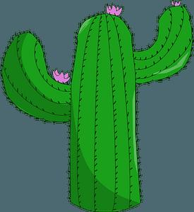 Saguaro Cactus clipart