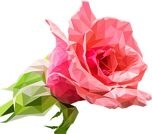 Realistic Pink Rose clipart