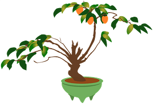 Bonsai Tree with Orange Blossoms in a Green Pot clipart