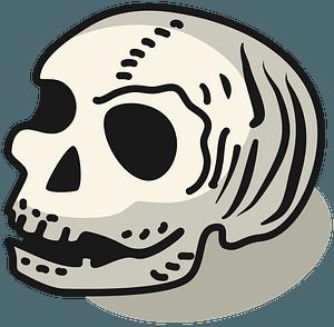 Human skull clipart