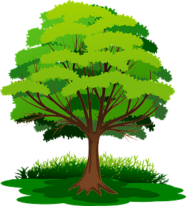 Tree with Green Leaves in the Grass clipart