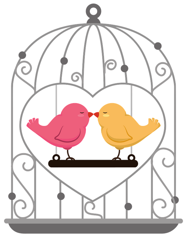 Pink And Yellow Birds Kiss Inside A Bird Cage Clipart Free Download Transparent Png Creazilla