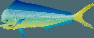 Striped Fish clipart
