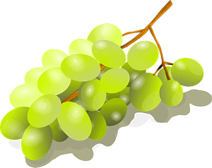 Bunch of green grapes clipart