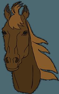 Brown horse head clipart