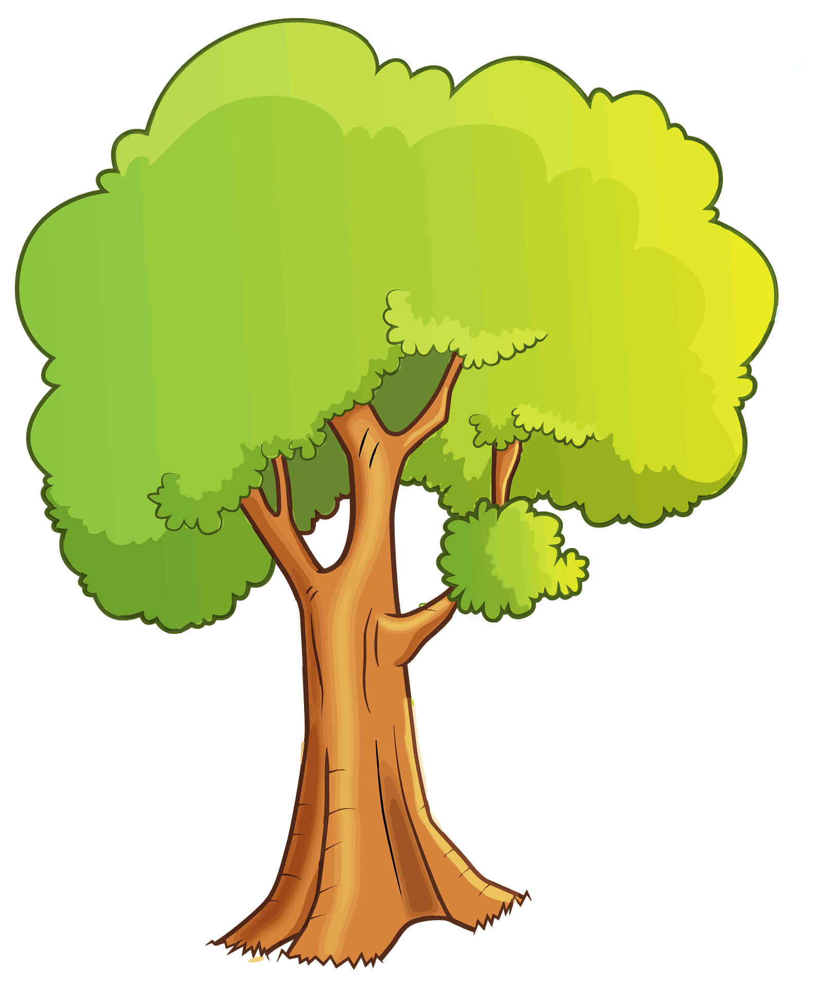 Green Tree With Leaves Clipart Free Download Transparent Png Creazilla