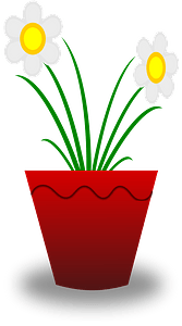 Flower Pot with White Flowers clipart