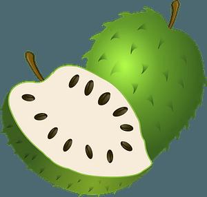 Guanabana clipart