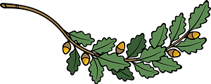 Oak Branch clipart