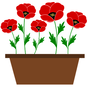 Red Poppies in a Brown Pot clipart